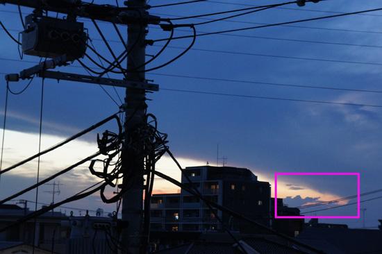 20100728_001.jpg