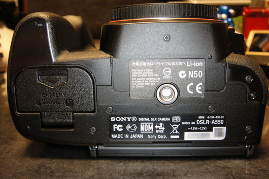 DSLR_A550_039.jpg